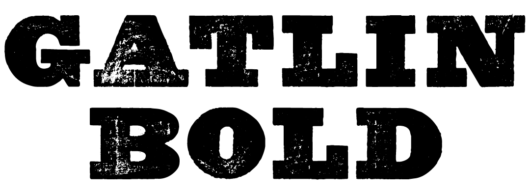 A Wild West style font called Gatlin Bold from the Walden Font Co. It is part of the Wild West Press set of fonts.